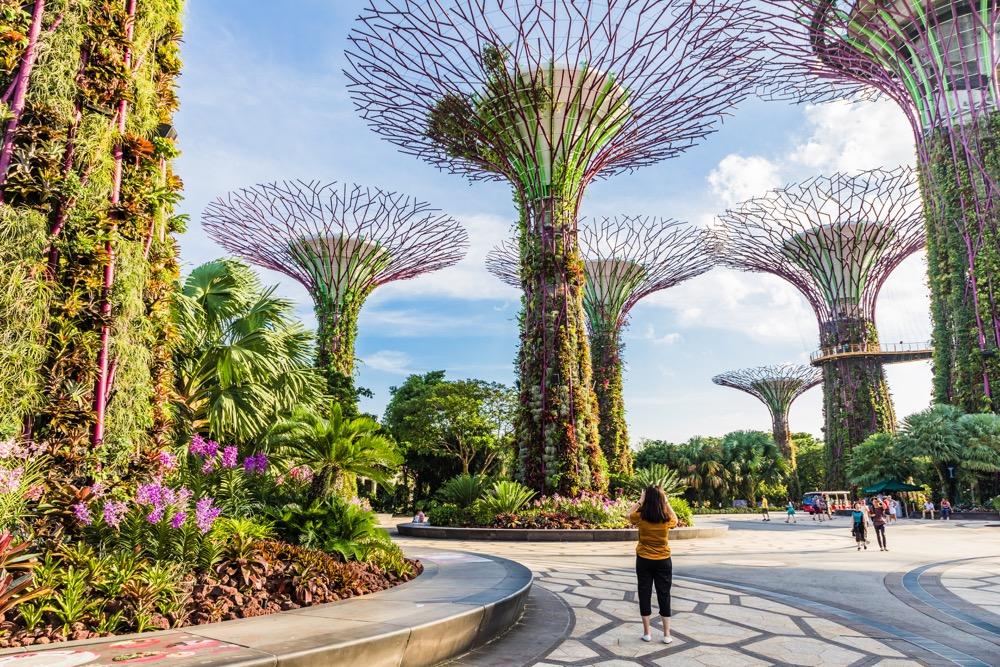 singapur w 2 dni