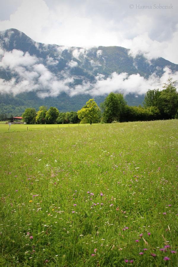 Bovec: raj dla aktywnych-3506