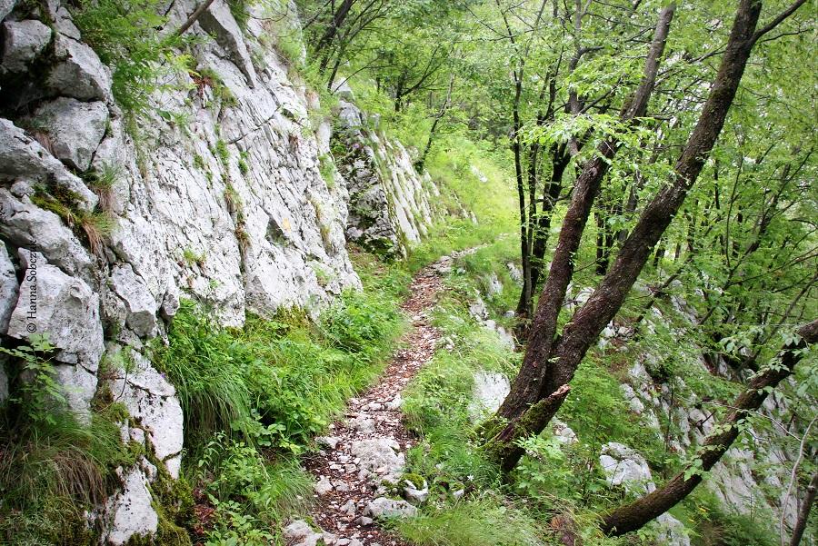 Bovec: raj dla aktywnych-3499