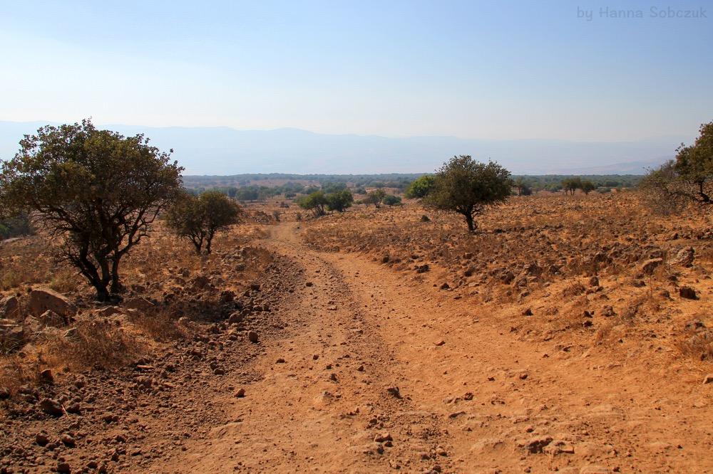wzgórza-golan